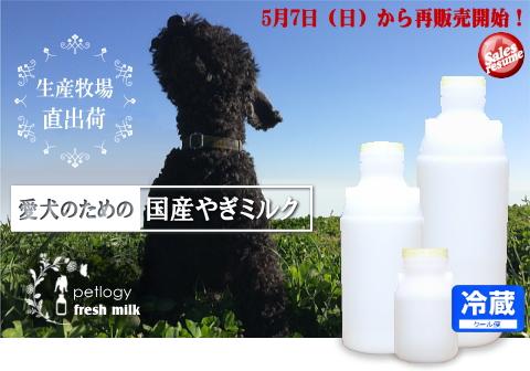 犬用ヤギミルク再販売開始のお知らせ