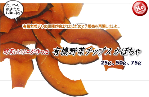 有機野菜チップスかぼちゃ販売再開のお知らせ(犬のおやつ)