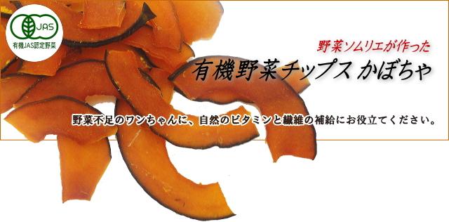 有機野菜チップス かぼちゃ